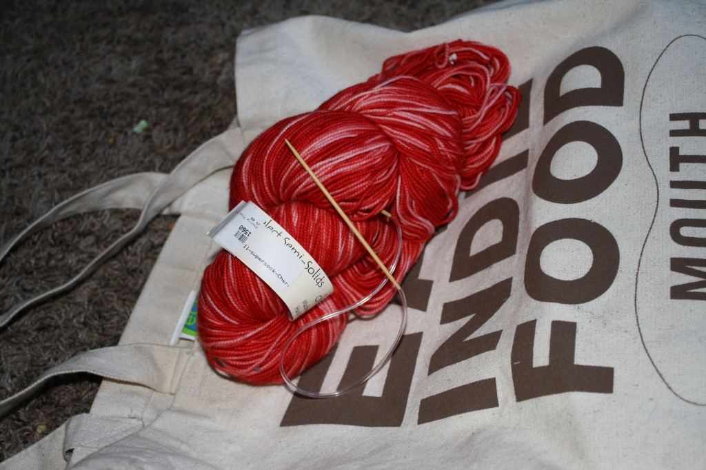 cherry tree hill yarn waiting for my attention