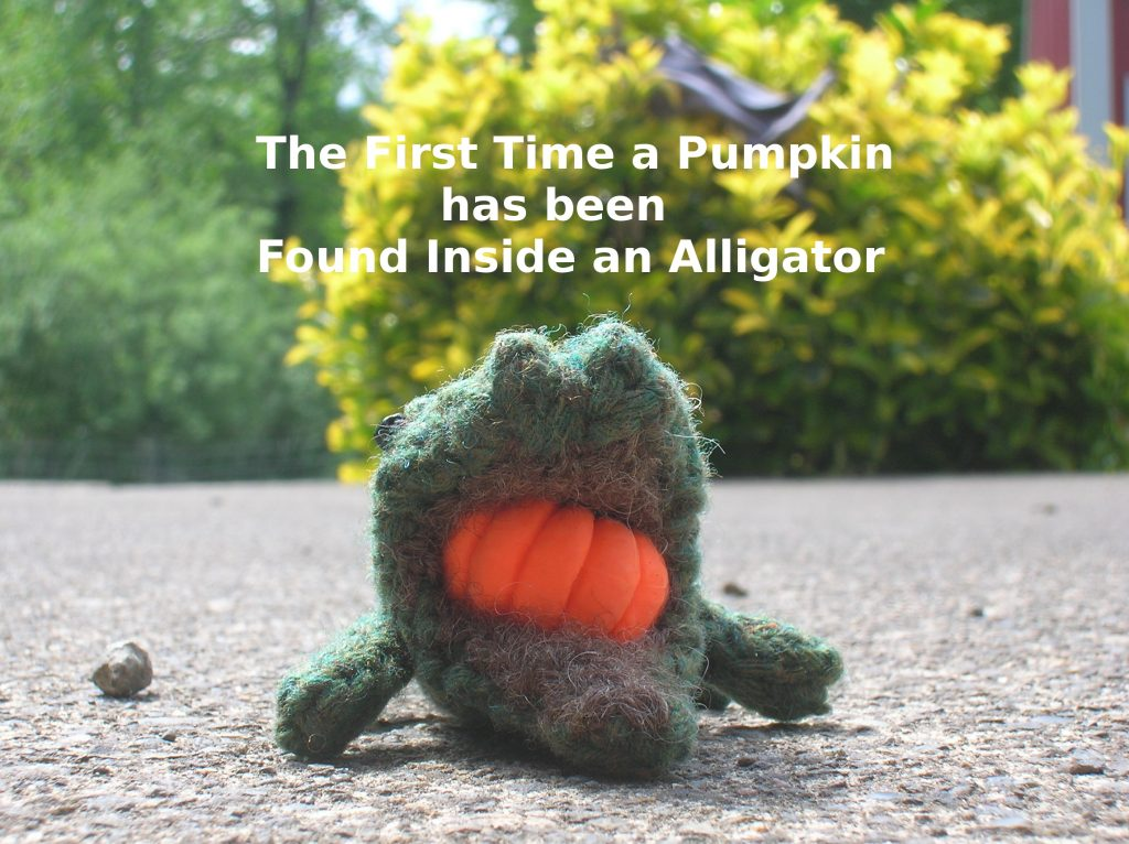knitted alligator with pumpkin eraser in its mouth